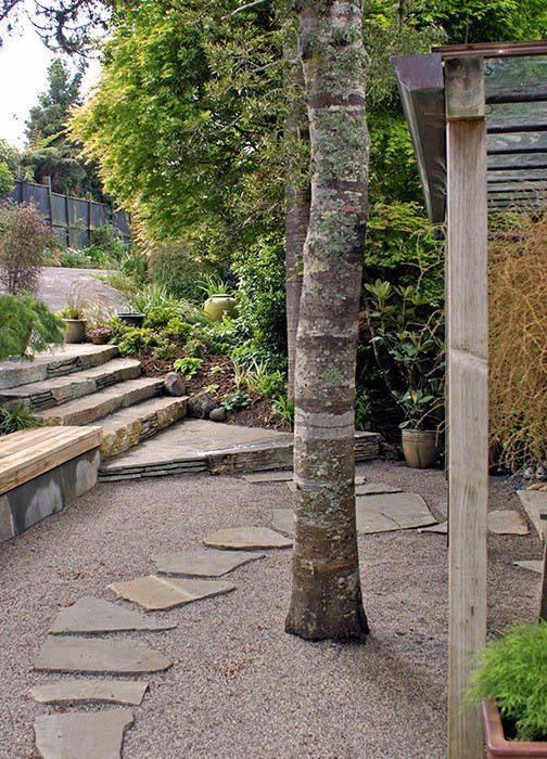 Soft landscaping auckland lawn laying planting for Auckland landscaping companies
