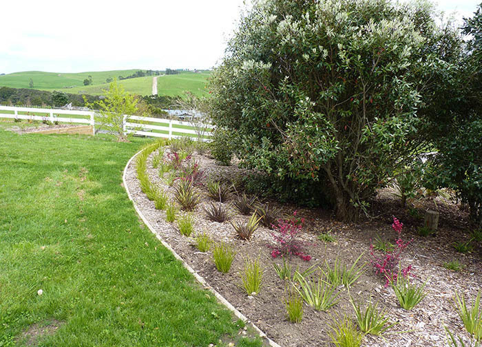 Landscaping contractors auckland garden landscapers for Landscaping auckland
